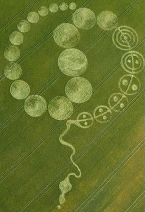 Most Recent Crop Circles | New crop circle was reported today from Wiltshire, UK