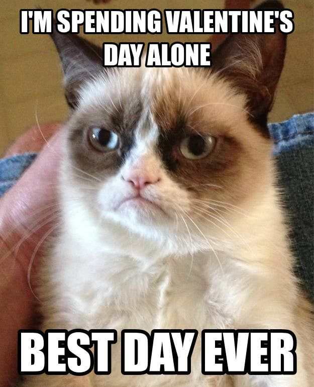 Grumpy Cat Isn T Excited For Valentine S Day In 2021 Grumpy Cat Humor Cat Memes Clean Funny Grumpy Cat Memes