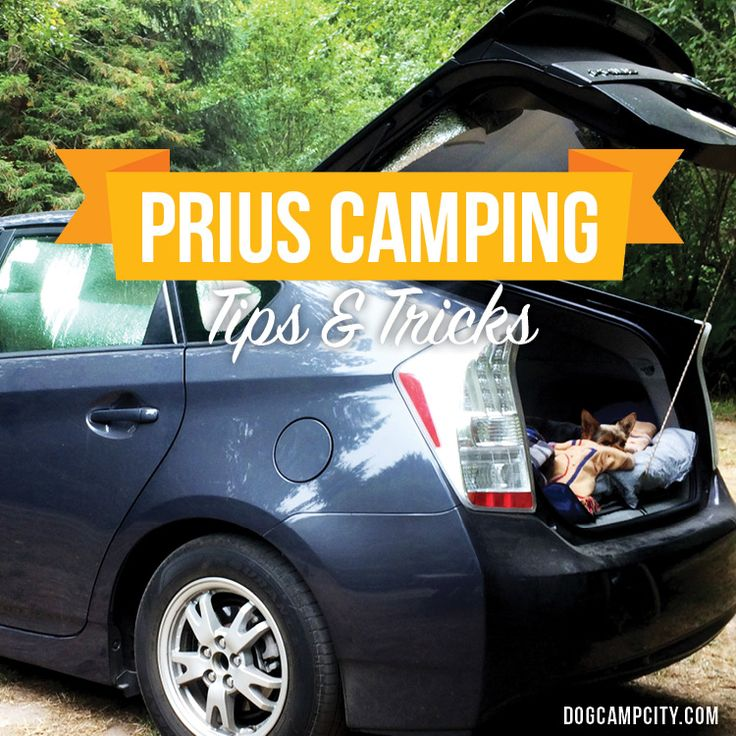 Camping in your car or Prius is fun and easy! Learn how to save space, make bug window screens, window sunshade covers and more. Prius camping is awesome!