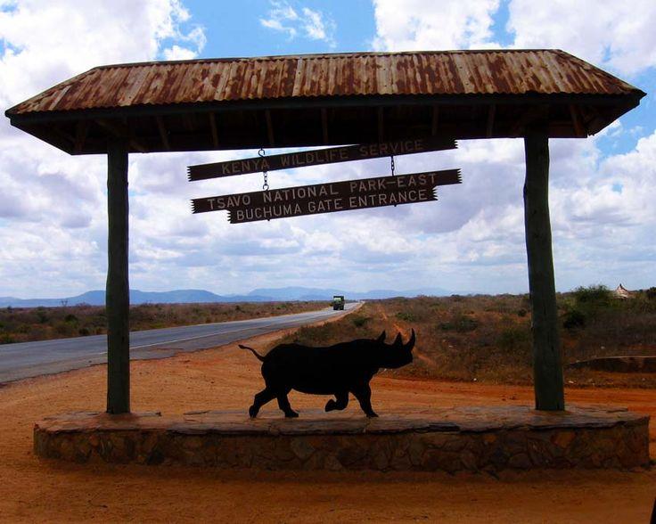 Tsavo National park-east Kenya