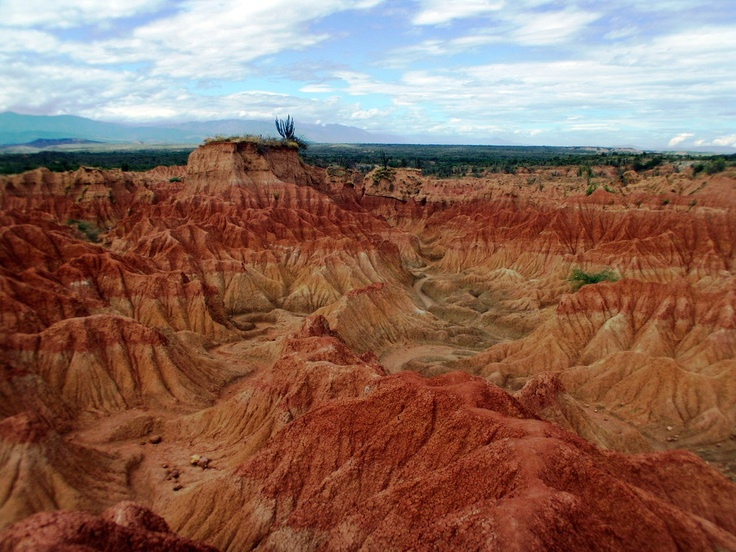 Desierto de la Tatacoa, Huila  La Tatacoa Desert, the second largest dry area in Colombia after the desert of La Guajira, is one of Colombia's most attractive natural landscapes. It covers an area of 330 km² of gray and ochre soil interrupted by the green of the cactuses.