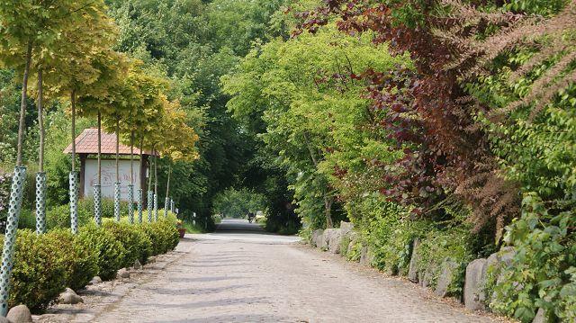 Zufahrt Katharinenhof