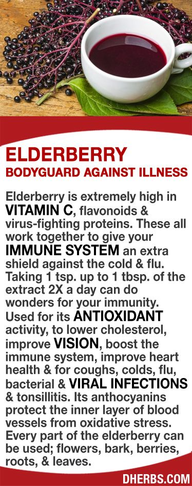 Elderberry is extremely high in vitamin C, flavonoids & virus-fighting proteins that work together to give your immune system an extra shield against the cold & flu. Taking 1 tsp. to 1 tbsp. of the extract 2X a day can do wonders for your immunity. Its an