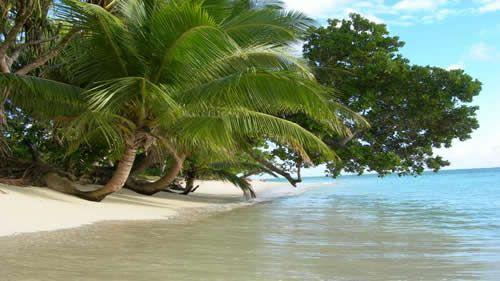 Ile Aux Nattes è una piccola ma incantevole isola tropicale (a soli 3 km di diametro) appena al largo della punta meridionale di St Marie. L'unico modo per raggiungere l'isola è con la Lakana (canoe di legno tradizionali) da Sainte Marie. Durante la bassa marea, un buon nuotatore può attraversare a nuoto il canale (circa 300 metri) che separa le due isole in meno di 10 minuti. Sopra una parte della spiagga paradisiaca che contraddistingue quest'isola.