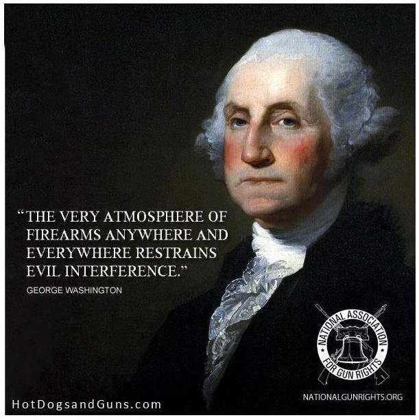 Gun Control Quotes 176 Best Shall Not Be Infriged Images On Pinterest  2Nd Amendment .