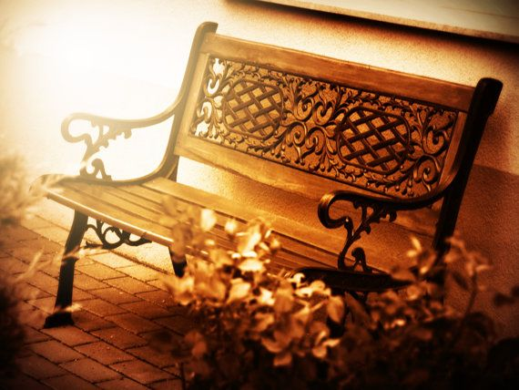 Bench photography nature photography romantic by Katicaphoto