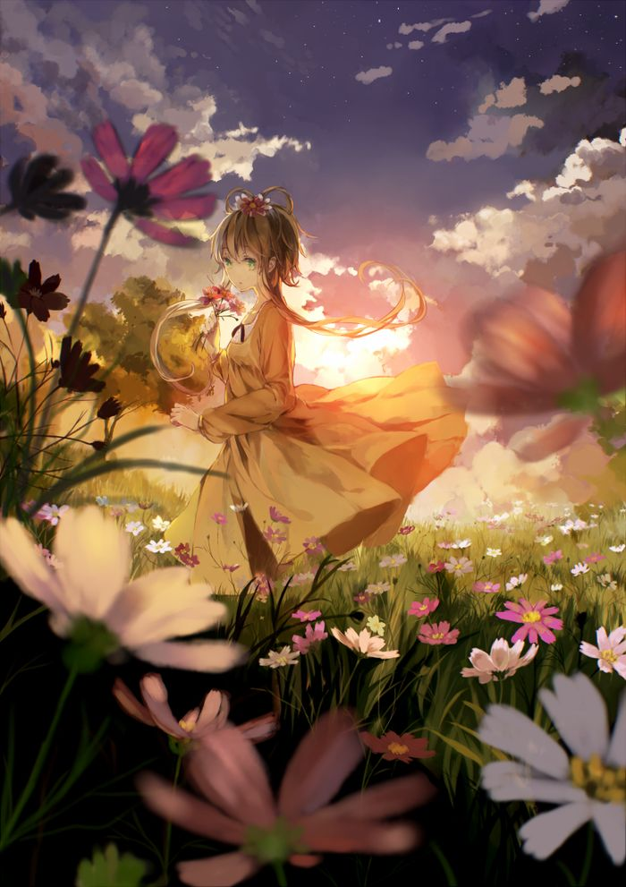 ✮ ANIME ART ✮ summer time. . .picking flowers. . .field. . .sunset. . .sunlight. . .clouds. . .dress. . .nature. . .cute. . .kawaii