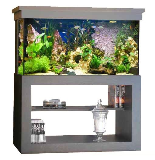 best 25+ aquarium pas cher ideas on pinterest   deco aquarium pas