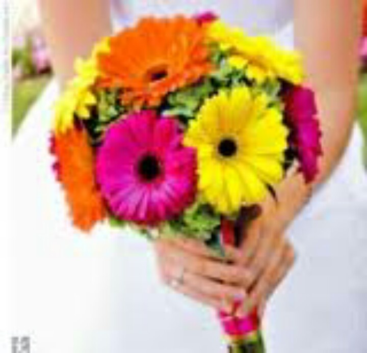 Bridal Bouquet Of Gerbera Daisies : Hot pink orange yellow purple lime green