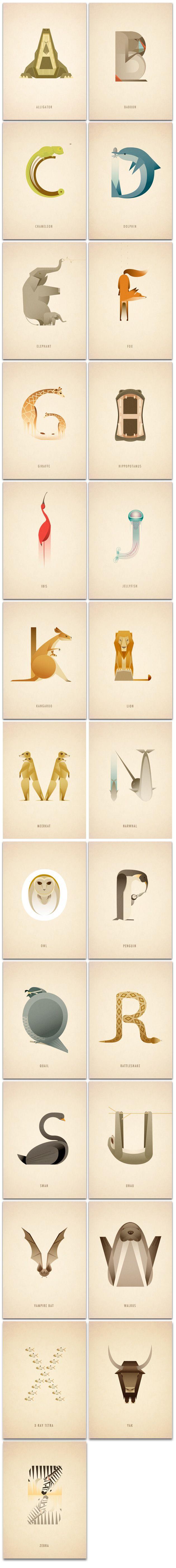 Animal_Alpabet01 #tipography #animal                                                                                                                                                                                 Más