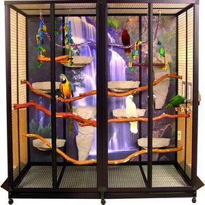 cool Parot cage