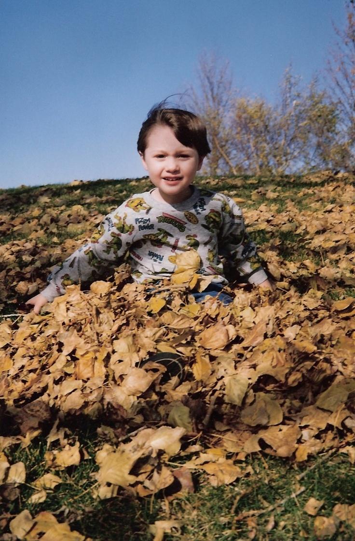 A big ol pile of leaves...