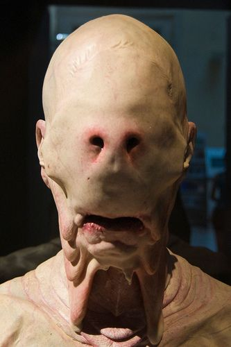 "The makeup mask that Doug Jones wore in the movie ""Pan's ..."