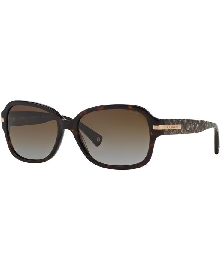 Coach Sunglasses, HC8105