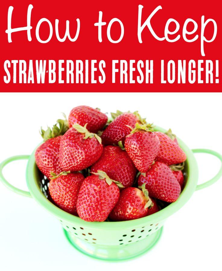 How to Keep Strawberries Fresh In the Fridge! Mold