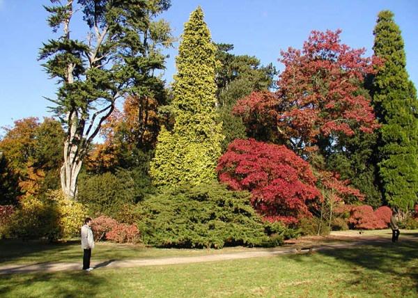 Almeerders planten elk eigen boom in opgroeiend Arboretum. De zorg voor de boom blijft bij de planter.