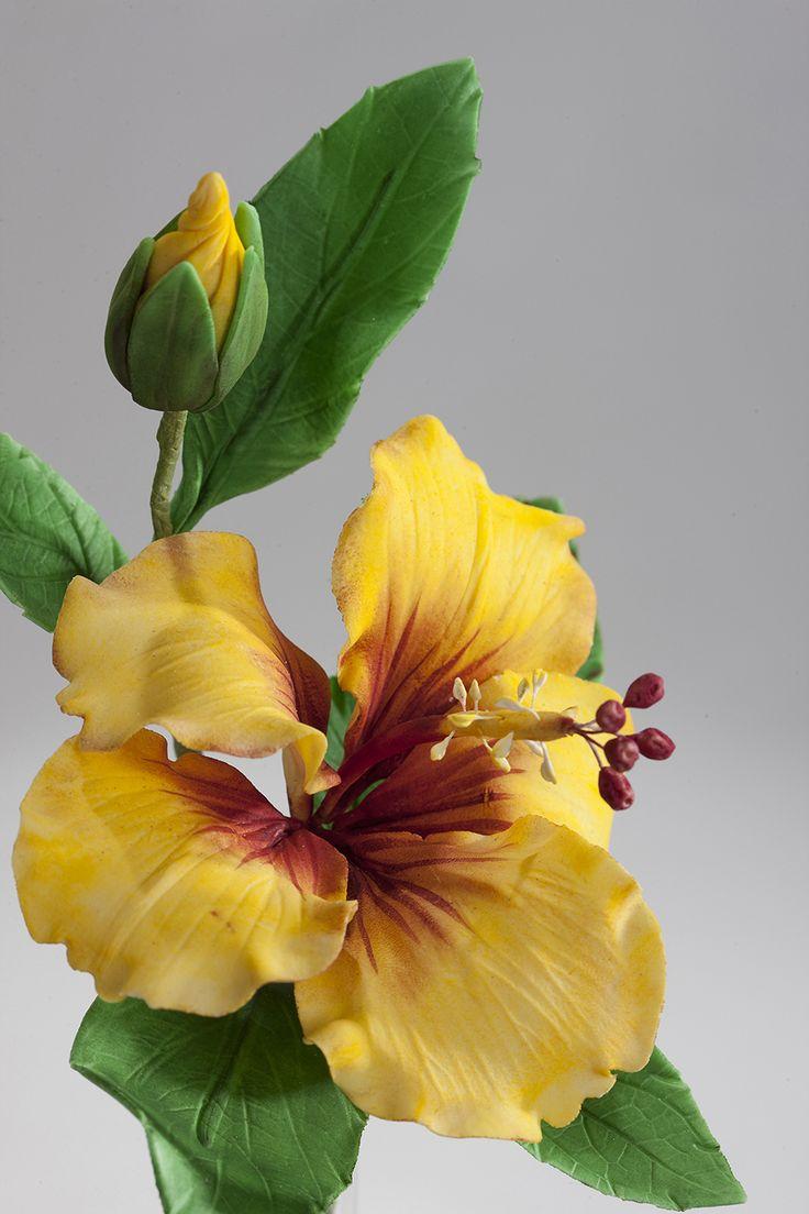 36 best mrandersonssugarflowers images on pinterest sugaring art flowers by emi anderson izmirmasajfo
