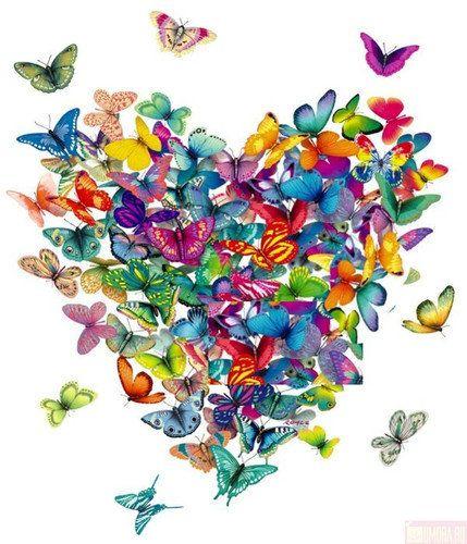 Sevgi Kelebeği Kalbim