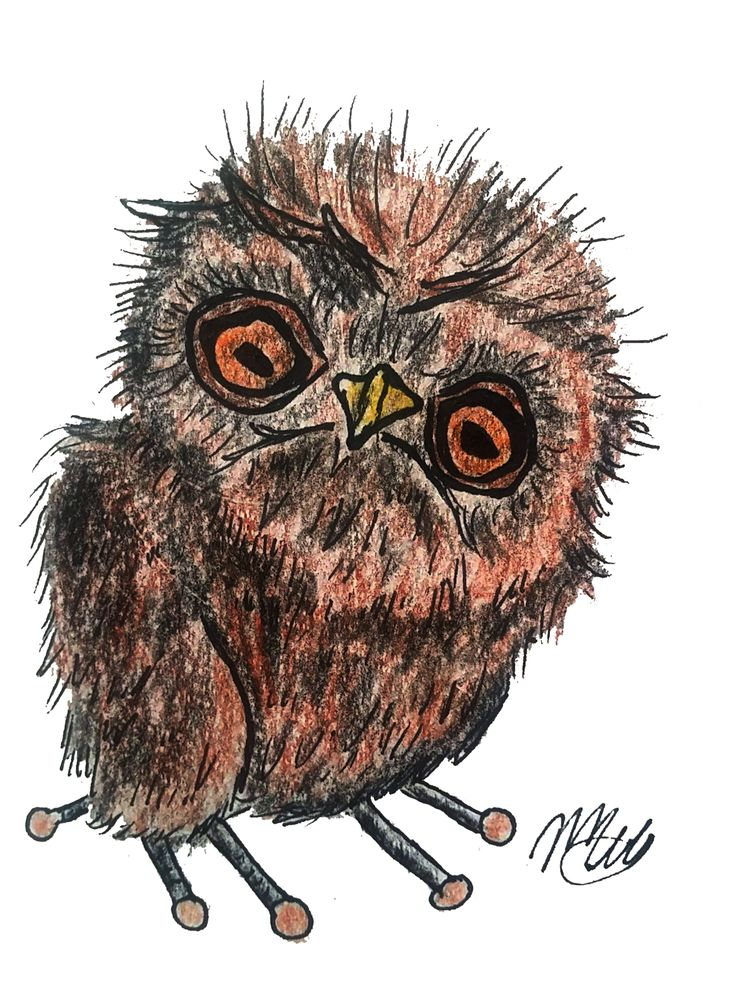 This is an illustration of a little owl drawn with watercolour pencils and edited using GIMP. It is instantly downloadable at the price of $4.56 on Etsy (see link above). It can be used as an illustration for a nursery room, a boy's room, as a decoration for a T-shirt or any other fabric you wish; it can also be used as a design.