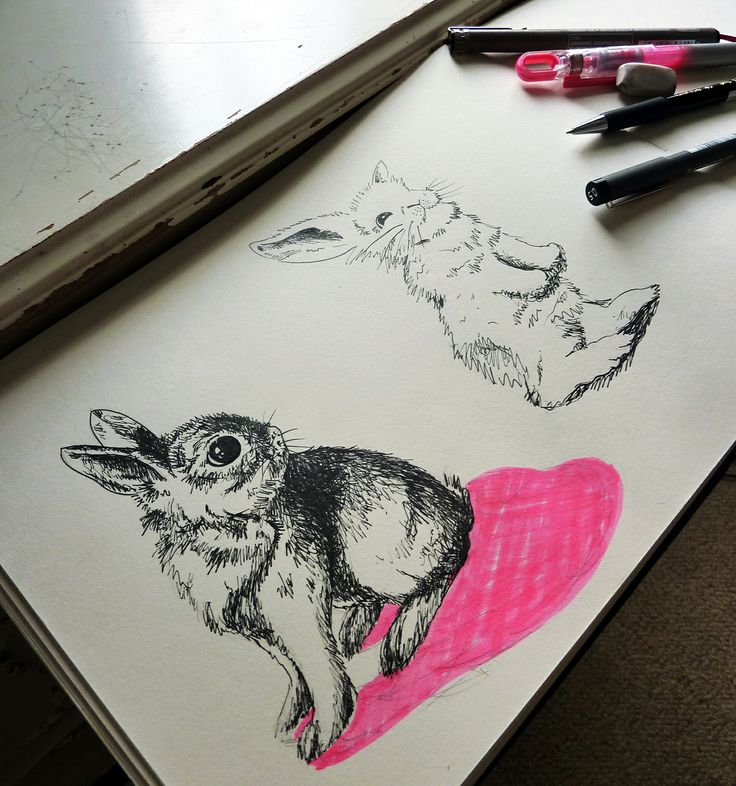 Concept sketches in ink pen and fluro highlighter of a bunny by ellaquaint.