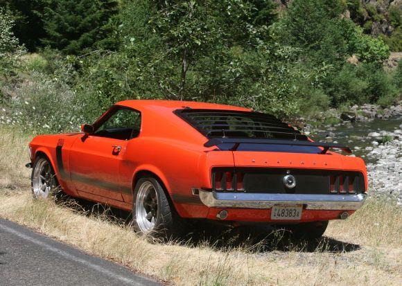 1970 Boss 302 Mustang For Sale Grass