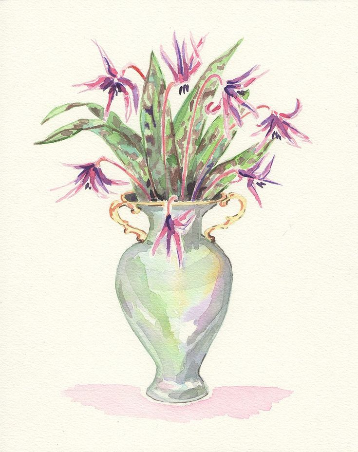 Take a look at my listing, folks Dogtooth violet watercolor, dog's tooth violet art, spring flower bouquet, pink flower print,floral art, Tamara Jare art, bouquet watercolor https://www.etsy.com/listing/507979060/dogtooth-violet-watercolor-dogs-tooth?utm_campaign=crowdfire&utm_content=crowdfire&utm_medium=social&utm_source=pinterest