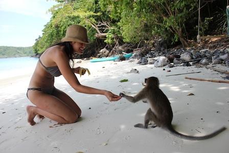 Monkey Beach, thailand.