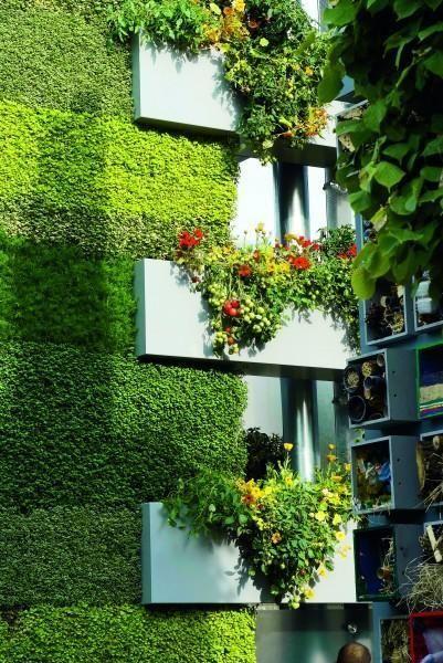 805 best Jardim Vertical e Telhado Verde 2 images on Pinterest