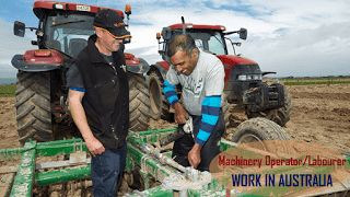 Machinery Operator/Labourer  Job Type: Permanent  Location: Freemans Reach NSW  Salary: c. $50,000     Who We Need  Looking to get into t...