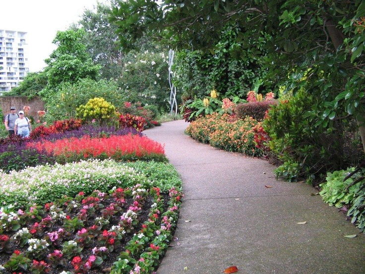 Resilient plants suited to a sub-tropical climate are planted in these beds.