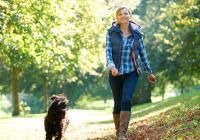 Introducing a Puppy to Walk on a Leash | Cesar Millan