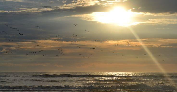 Caminhada na Praia do Cassino desvenda paisagens do litoral sul do Brasil