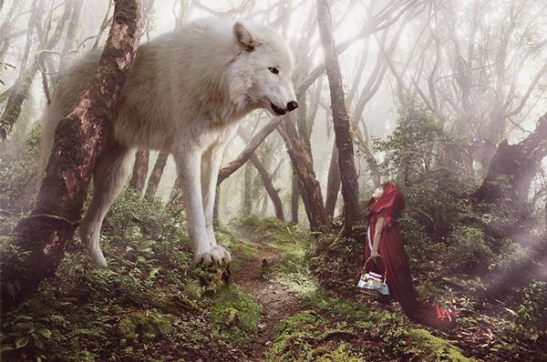 The Giant Wolf on Behance Red riding hood wolf, Fantasy wolf