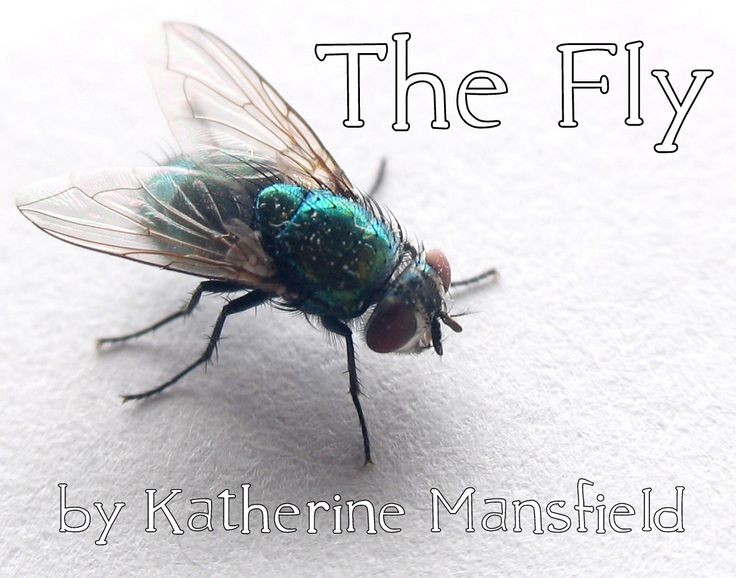 the fly by katherine mansfield original text Miss brill (1920) by katherine mansfield — the blue sky powdered with gold and great spots of — miss brill was glad that she ned your mouth there.