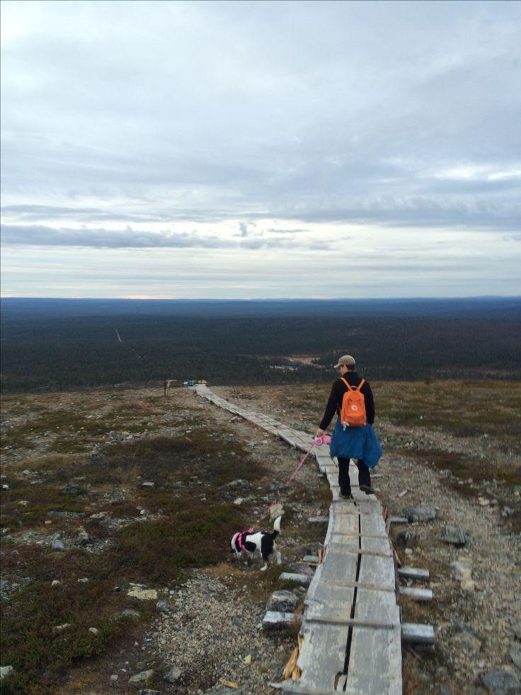 Hiking. Kiilopää. Lapland. Finland