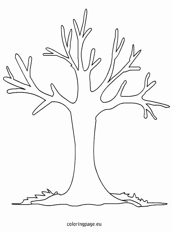 Tree Trunk Coloring Page Luxury Tree Trunk Line Drawing At Paintingvalley Tree Coloring Page Fall Coloring Pages Tree Outline