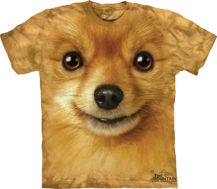 pomeranian face t-shirt - Click image to see hundreds of different animal t-shirts #themountaintees