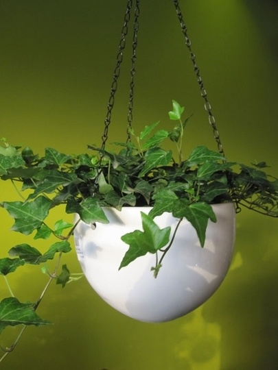 Hanging Planters for Stylish Homes