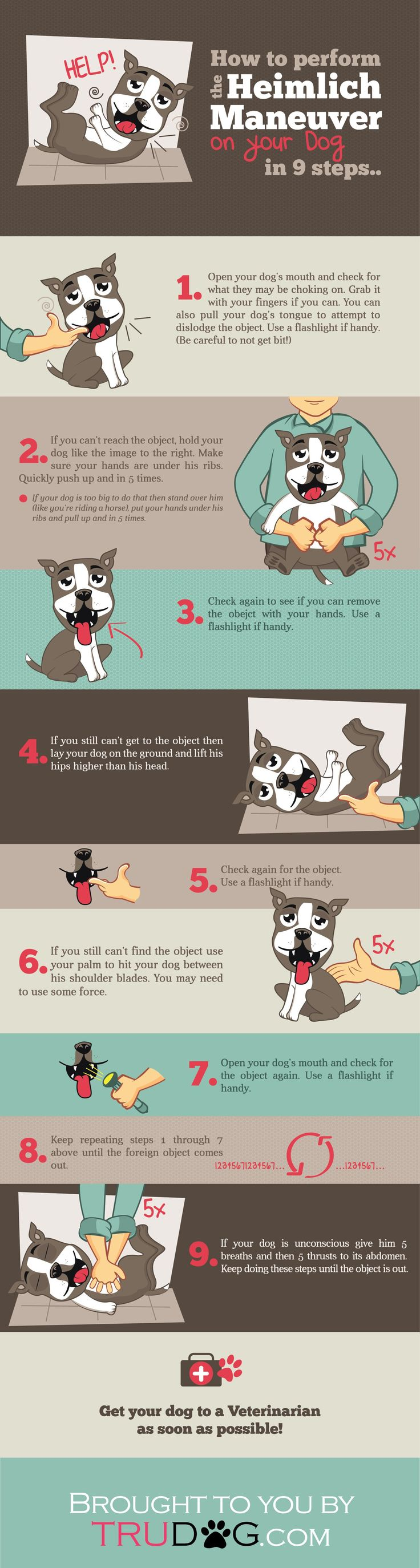 Best 25 dog heimlich ideas on pinterest cpr for dogs heimlich how to perform the heimlich maneuver on your dog in 9 steps xflitez Choice Image