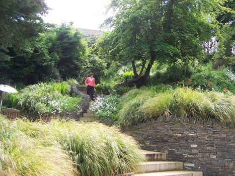 Various – Mary Reynolds - Landscape Designer