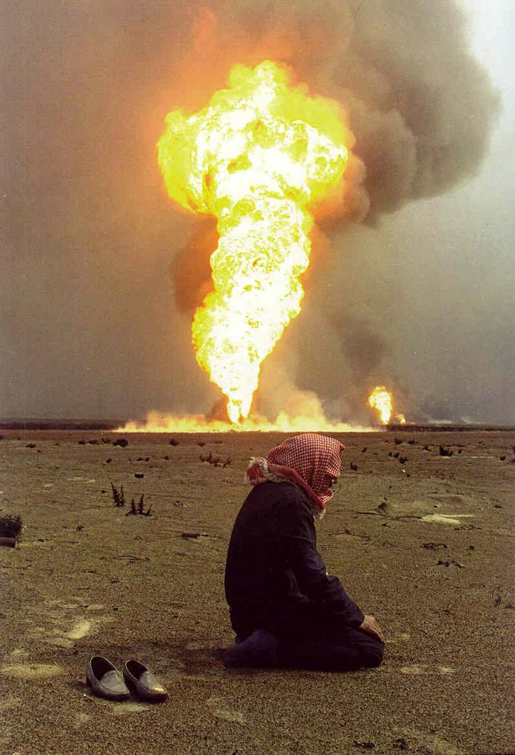 Essay on the persian gulf war causes