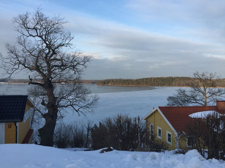 Hedlandet. A frozen Lake Mälaren.