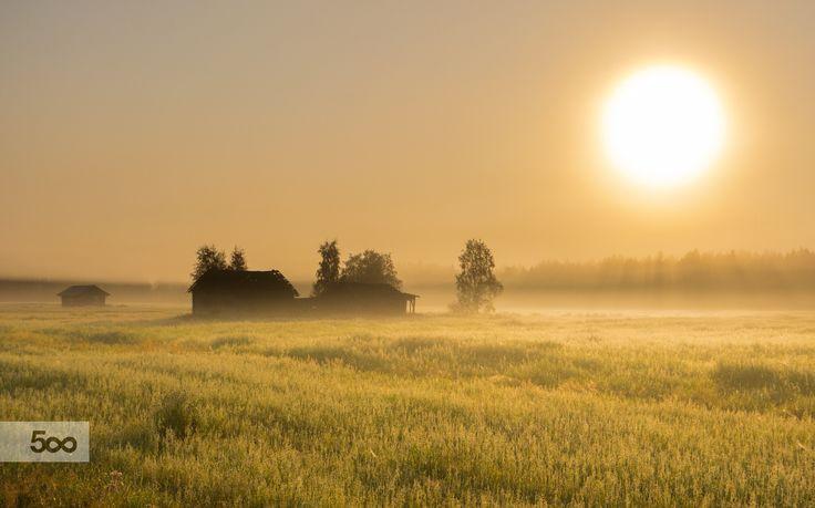 Good Morning! by Markku Talvipuro on 500px