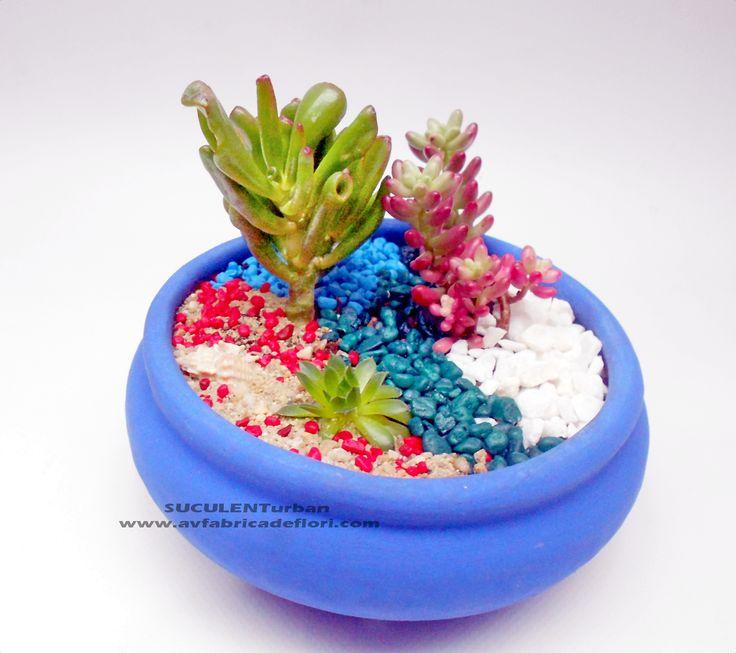 aranjament cu plante suculente in vas ceramic bonsai
