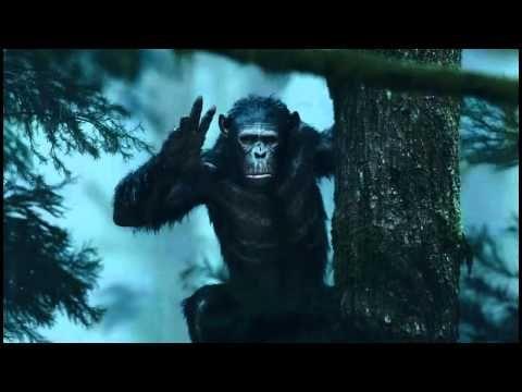 [[GRATUIT]]La Planète des singes : l'affrontement Streaming film complet en Français