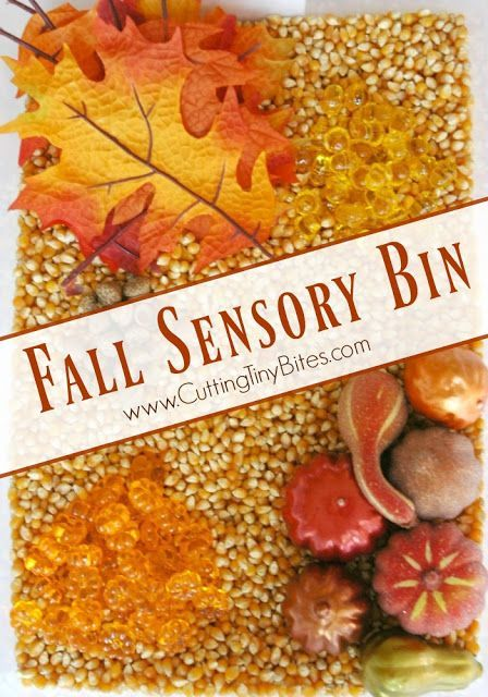 860 best sensory activities for kids images on