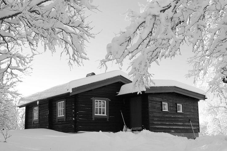 My 200 year old timber lodge. Valdres, Vestre Slidre.