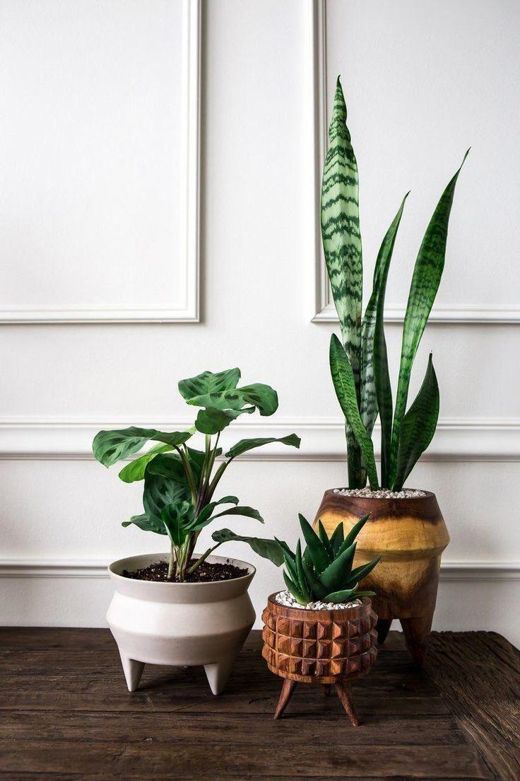 41 Contemporary Planter Boxes Designs Large Outdoor Planters Indoor Plants Outdoor Planters