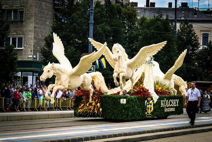 45. Debreceni Virágkarnevál - Debrecen Flower Carnival (2014.) - Debrecen, Hungary