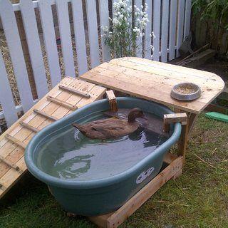 Duck Deck: Backyard Duck Habitat - recycle duck pond water to water